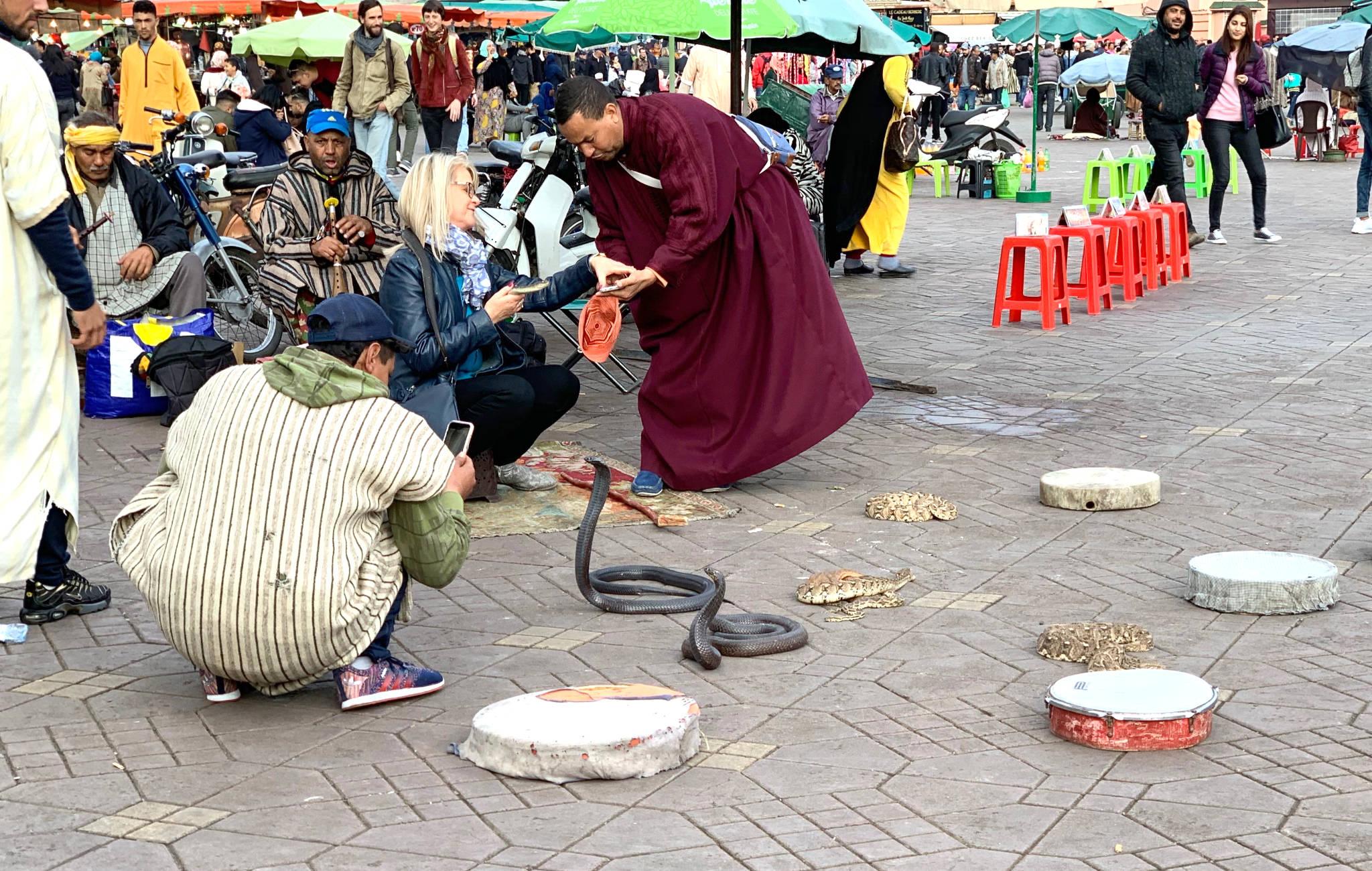 Charmeurs de serpents sur la place Jemaa El Fla