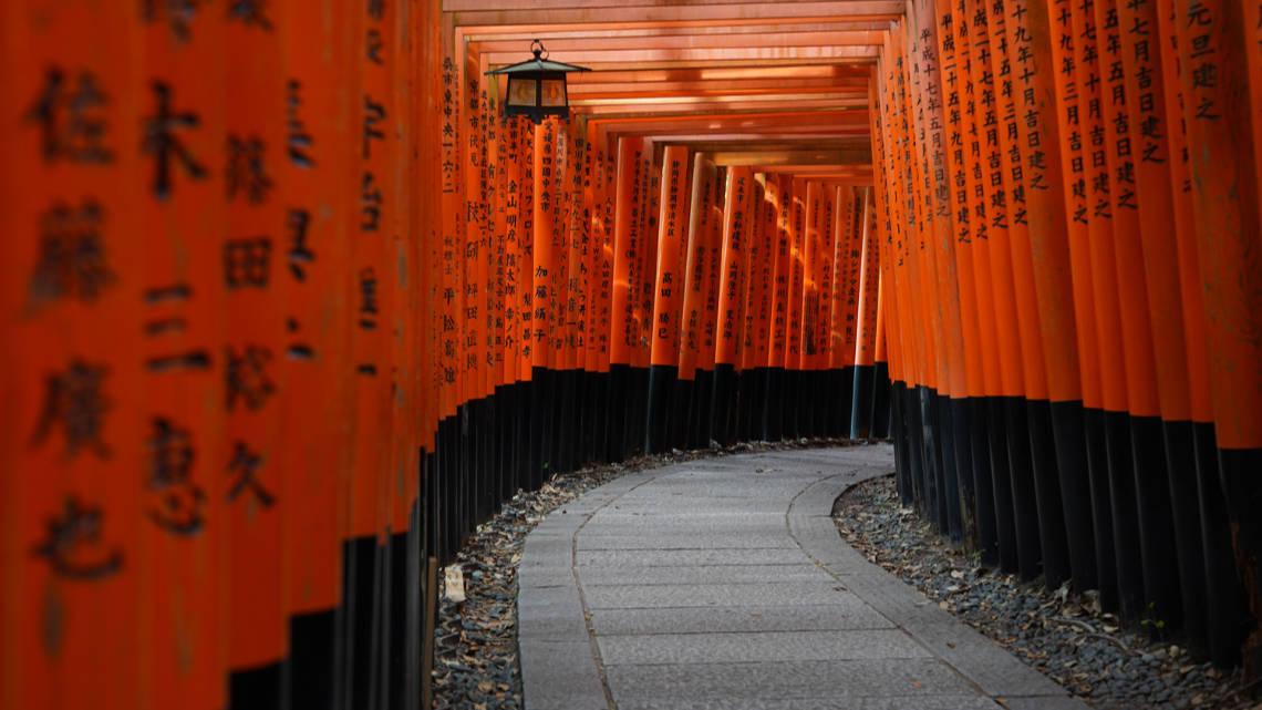 Les impressionnants tunnels de toriis du sanctuaire Fushimi Inari Taisha