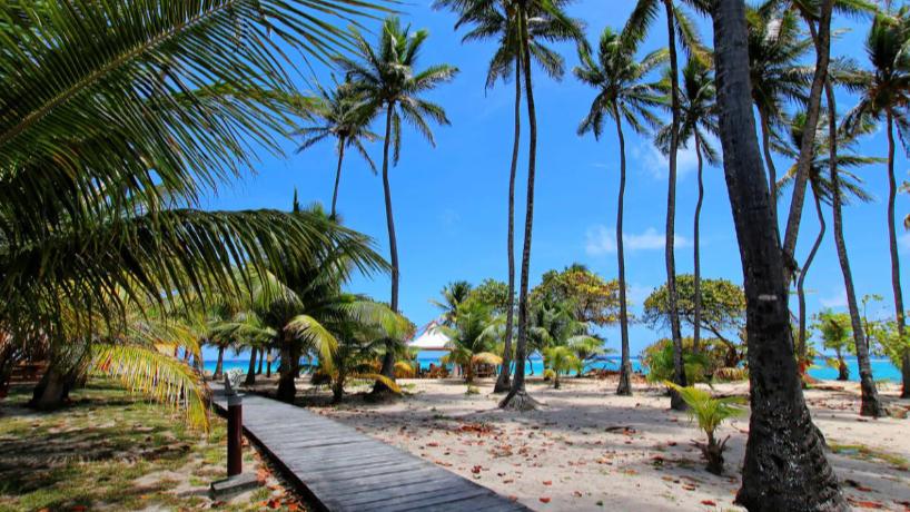 Quels sont les plus beaux hôtels pour passer des vacances de rêve à Marie Galante?